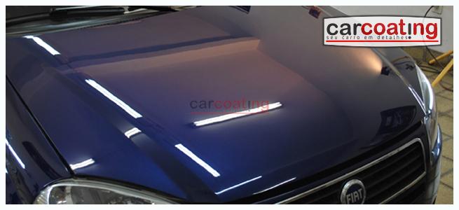 Carcoating-FiatPalio18-1012-CAPA